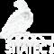 Shahin Int'l Commercial Agencies logo | شاهين للوكالات العالمية